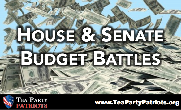 BudgetBattles