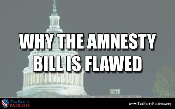 Amnesty Flawed Thumb