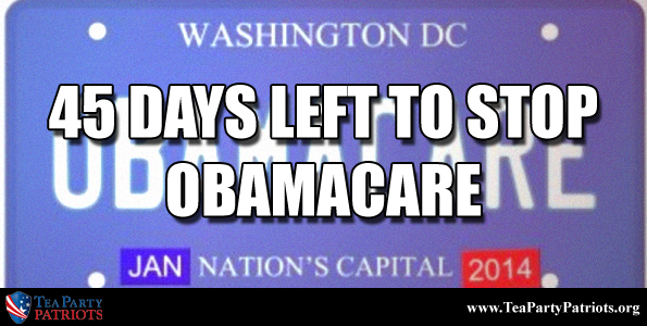 45 Days to Stop Obamacare Thumb